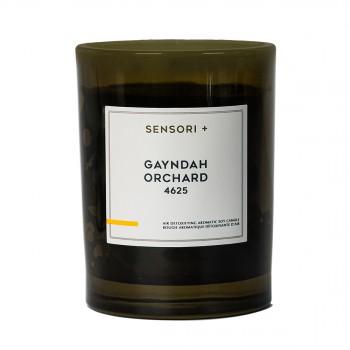 植萃净化香氛蜡烛 盖恩达果园